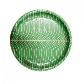 Disposable Buffet Plates(10 Pieces)