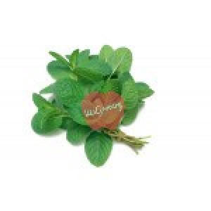 Mint Leaves(Pudina Patra) 1 Bundle